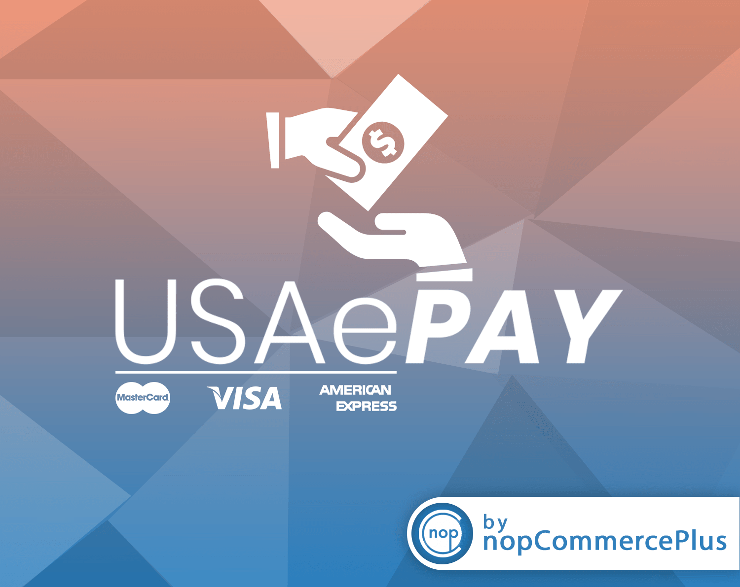Picture of USAePAY
